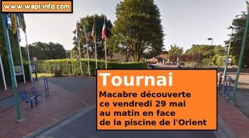 Tournai : macabre découverte sur le site de la piscine de l'Orient ce vendredi matin