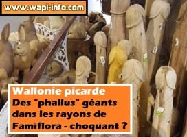 """Wallonie picarde : des """"phallus"""" géants dans les rayons de Famiflora - choquant ?"""
