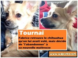 """Tournai : il retrouve le chihuahua qu'on lui avait volé, mais décide de """"l'abandonner"""" à sa nouvelle maîtresse"""