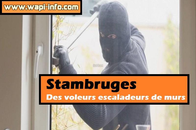 stambruges voleurs escaladeurs