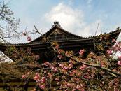 Nanzenji Temple Kyoto, Japan