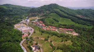 Nokcha resort Boseong Korea