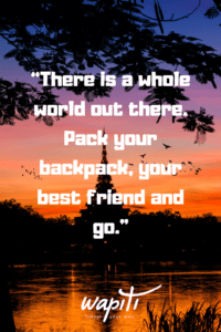 25 Of The Best Travel Quotes With Friends Wapiti Travel