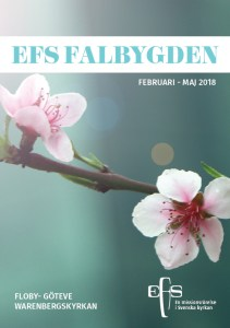 Program EFS falbygden vår 2018