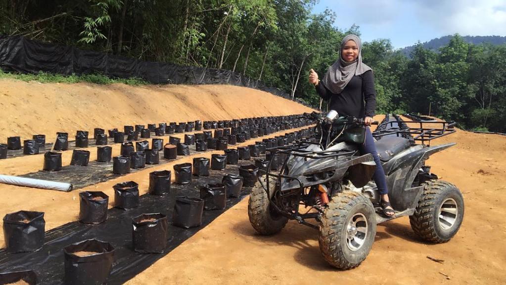 Ayu Damit, A Sabahan Singer Turned Entrepreneur Making Money in Agriculture