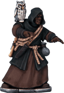 Frostgrave Wizards boxed set 0