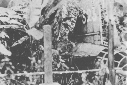"""The crashed remains of Yamamoto's Mitsubishi """"Betty"""" bomber in the jungles of Bougainville."""