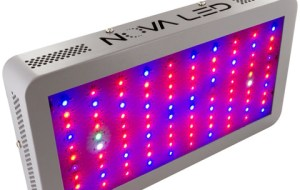 Best LED Grow Light Reviews