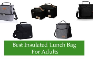 Best Insulated Lunch Bag For Adults Review