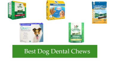 Best Dog Dental Chews Reviews