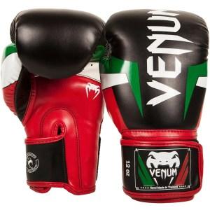 Venum Elite Boxing Gloves - Italy
