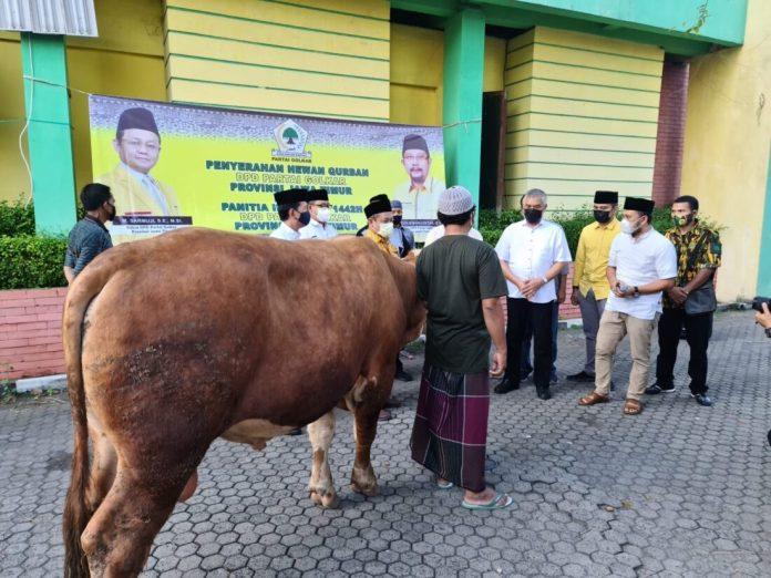 Rayakan Idul Adha, Golkar Jatim Qurban 13 Sapi