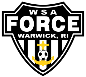 WSA force logo