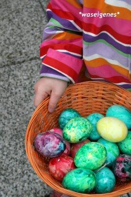 12 von 12 im April 2009, Mein Tag in Bildern, waseigenes.com