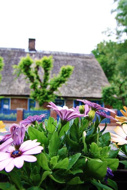 Nordseebad Otterndorf | was eigenes Blog