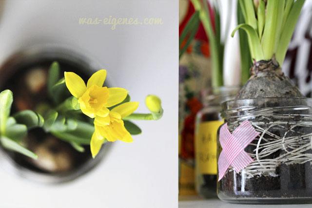 Hallo Frühling | Osterglocken im Honigglas | waseigenes.com DIY Blog