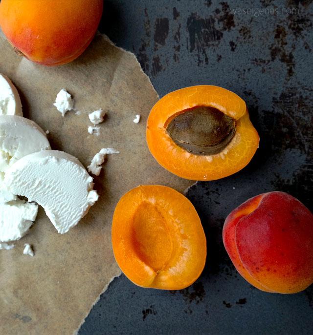 rezept-waseigenes-com-aprikosen-ziegenkaese-eiscreme