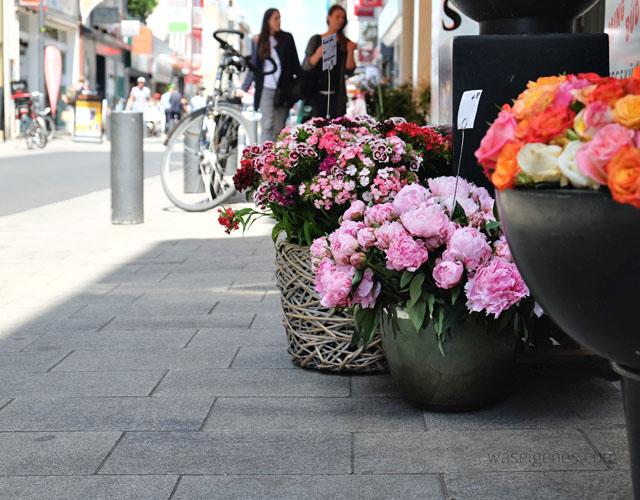 Koelner Suedstadt | Severinsstrasse | Blumen | waseigenes.com