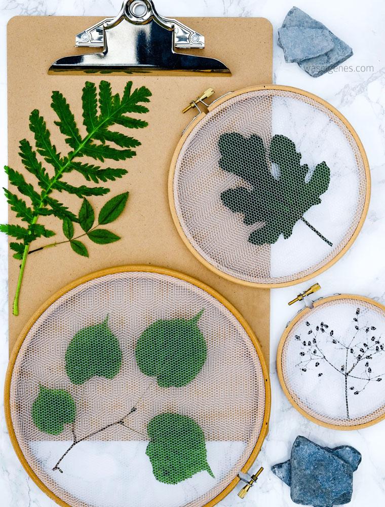 Alles im Rahmen! Getrocknete Blätter im Stickrahmen. Pflanzen Deko
