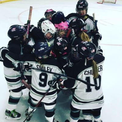 Washington County Youth Hockey Ice Lynx