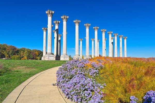 National Arboretum Washington DC