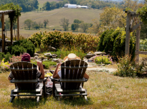 How to Spend a Day Around Middleburg's Wine Country ...