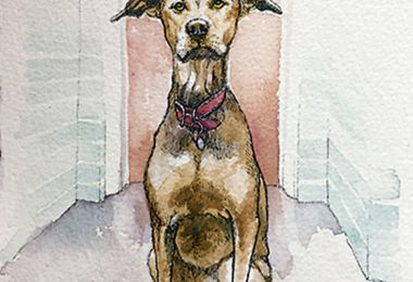 These Five Local Artists Will Create Custom Portraits of Your Pet