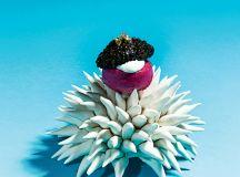 Handmade porcelain sea-urchin bowl for beet meringue and caviar at Minibar.