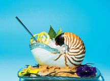 Tiger nautilus shell in a bed of sand for gin-and-tonics at Del Mar.