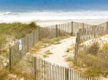 Let Us Tell You Which Beach You Should Visit | Washingtonian