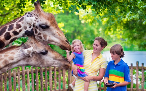 Image result for National Zoo