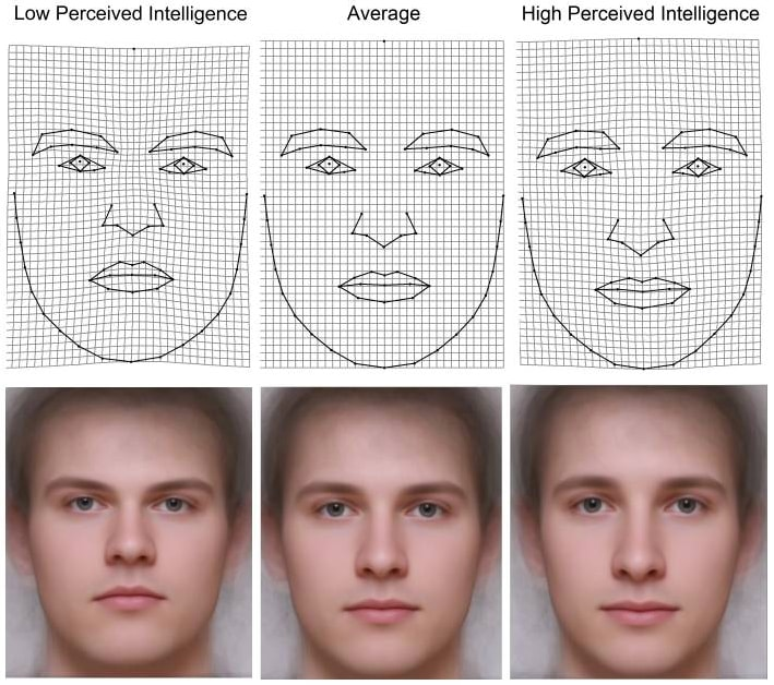 Male intelligence stereotypes