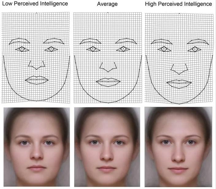 Female intelligence stereotypes