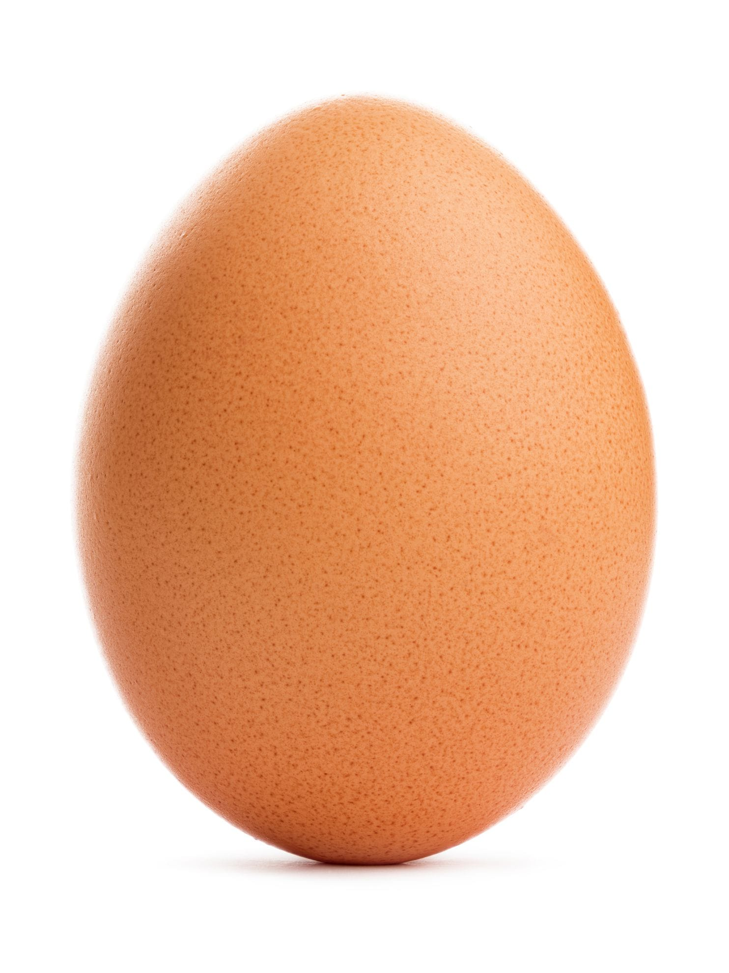 Do all those kids really like eggs Or do they just like