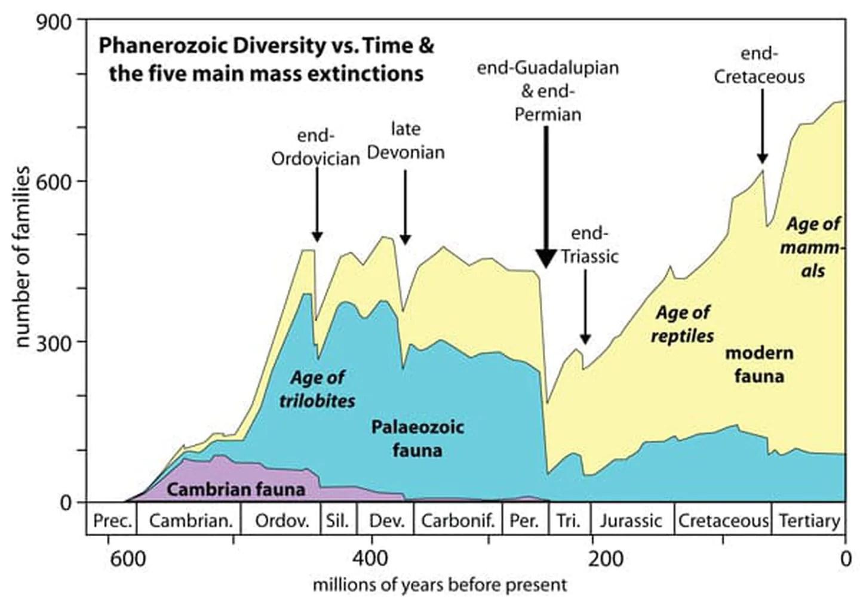 Dinosaur Extinction Timeline