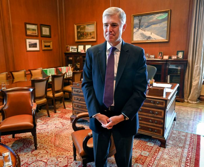 Image result for New Gorsuch