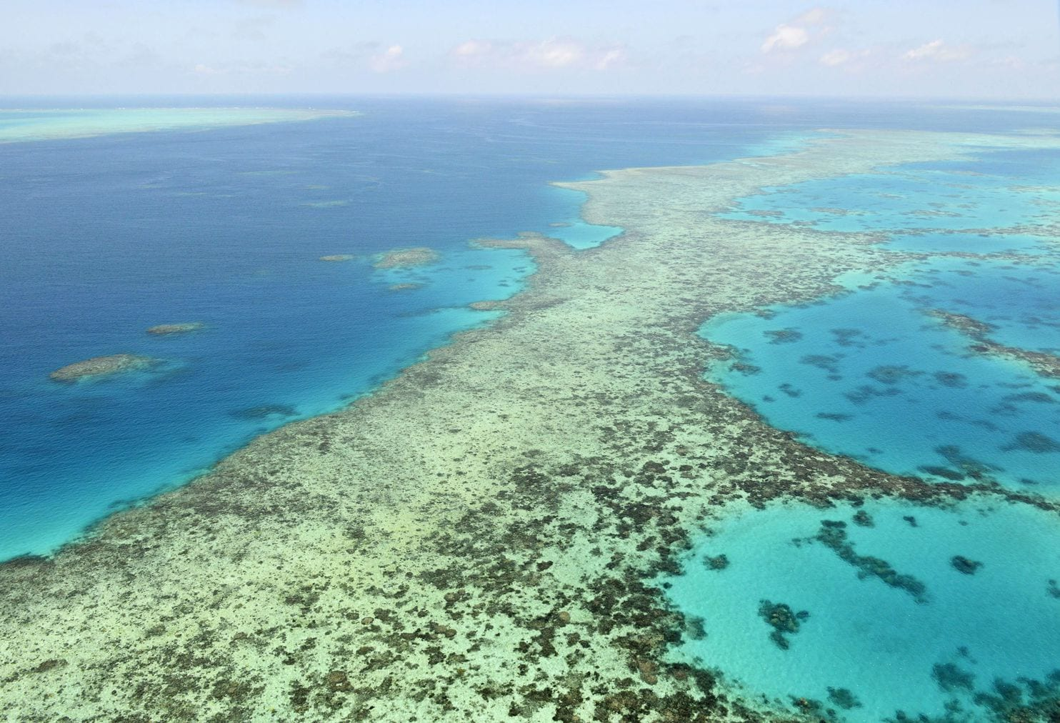 The Great Barrier Reef Is Being Battered By Climate Change
