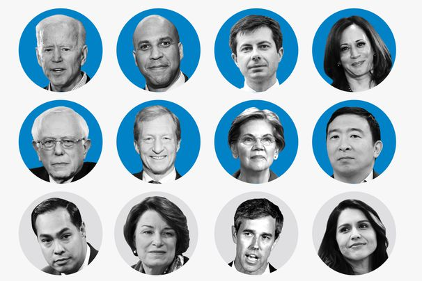 Who has qualified for the November Democratic debate