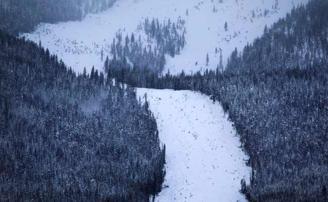 Colorado Has Seen An Unprecedented Avalanche Onslaught