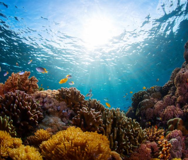 The Oceans Are Actually Warming  Percent Faster Than The Most Recent Ipcc Report Suggested Istock