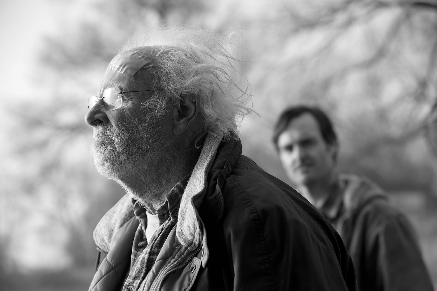 Nebraska movie review Bruce Dern delivers the performance of a lifetime  The Washington Post