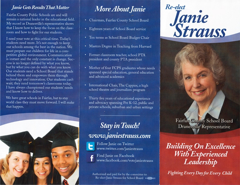 Political Campaign Brochure Examples Lessons Tes Teach