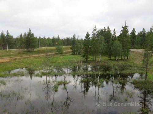 FinnlandSumpf.jpg