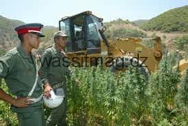 المغرب يتخذ الأراضي الصحراوية معبرا لإغراق منطقة الساحل بالمخدرات
