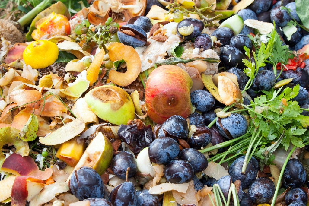 reduce food waste tips