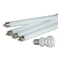 Fluorescent bulbs are household toxins.
