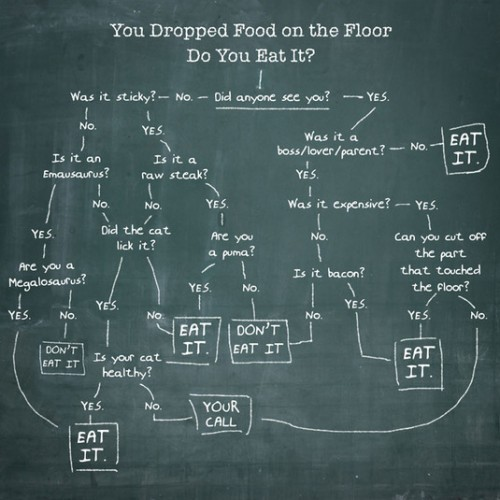 You dropped food on the floor, do you eat it