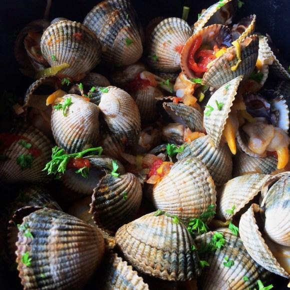 Lekker eten in Groningen: kokkels bij 't Ailand van De Goede Vissers in Lauwersoog