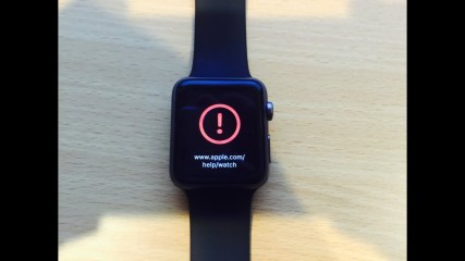 Apple Watch Crashed Bricked/Broken