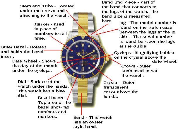 watch movement diagram battery relocation wiring parts irg preistastisch de of rolex rh watchgeek com mechanical
